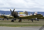 SP-ZWM-2008-03-22LPBG